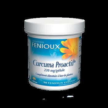 Fenioux Curcuma Proactif 90...
